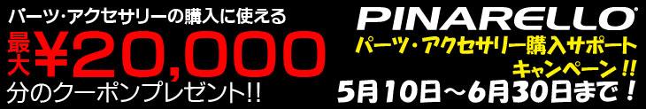Pina_campaign2013 (1).jpg
