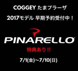 PINA2017SALE